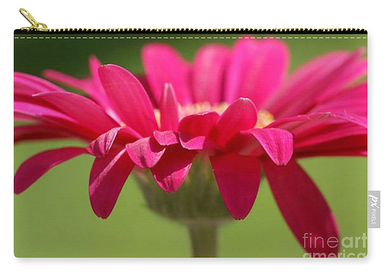 Pink Carry-all Pouch featuring the photograph Red Pink Daisy by Carol Lynch