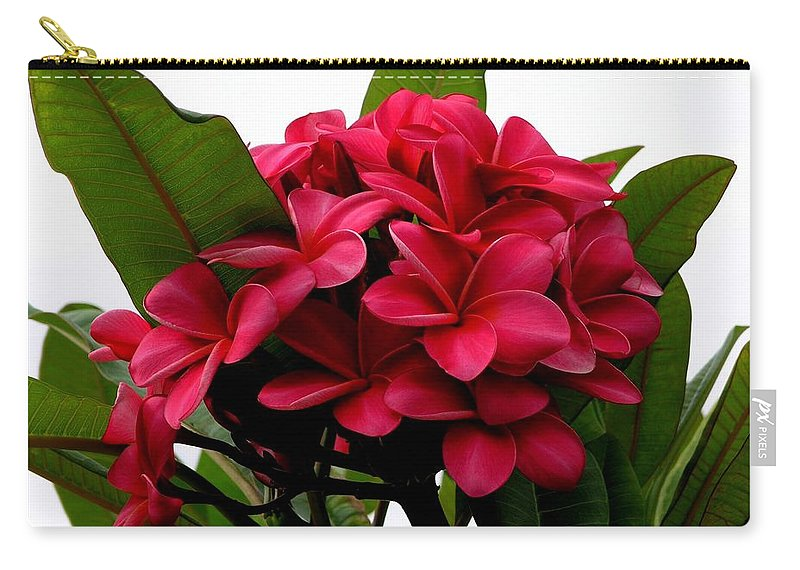 Plumeria Carry-all Pouch featuring the photograph Red Plumeria by Mary Deal