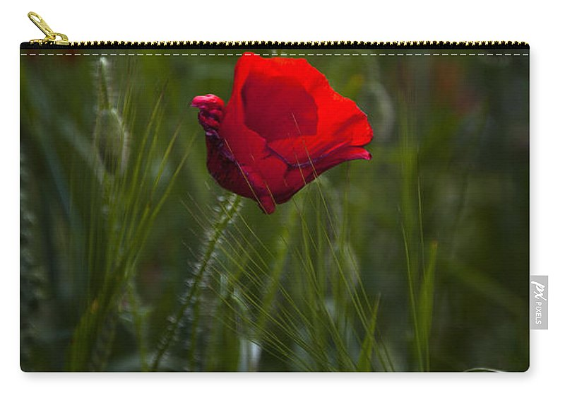Bloom Carry-all Pouch featuring the photograph Red Poppy by Svetlana Sewell