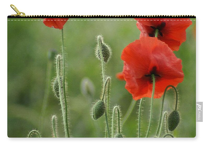 Poppies Carry-all Pouch featuring the photograph Red Red Poppies 1 by Carol Lynch