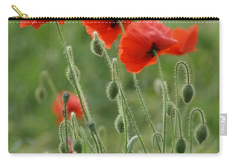 Poppies Carry-all Pouch featuring the photograph Red Red Poppies 2 by Carol Lynch