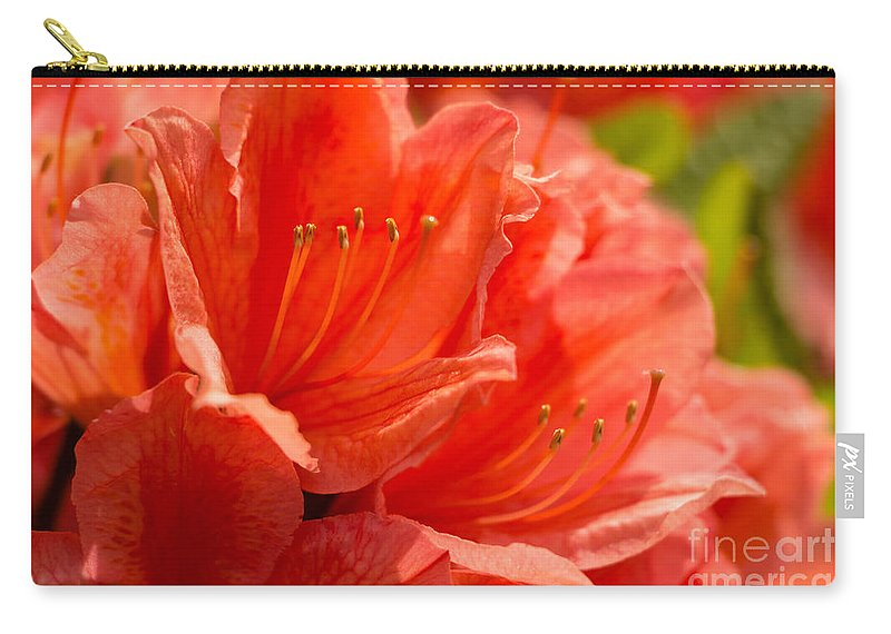 Flower Carry-all Pouch featuring the photograph Red Rhodo by Brigitte Mueller