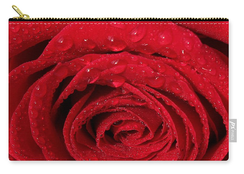 Rose Carry-all Pouch featuring the painting Red Rose And Water Drops by Georgeta Blanaru
