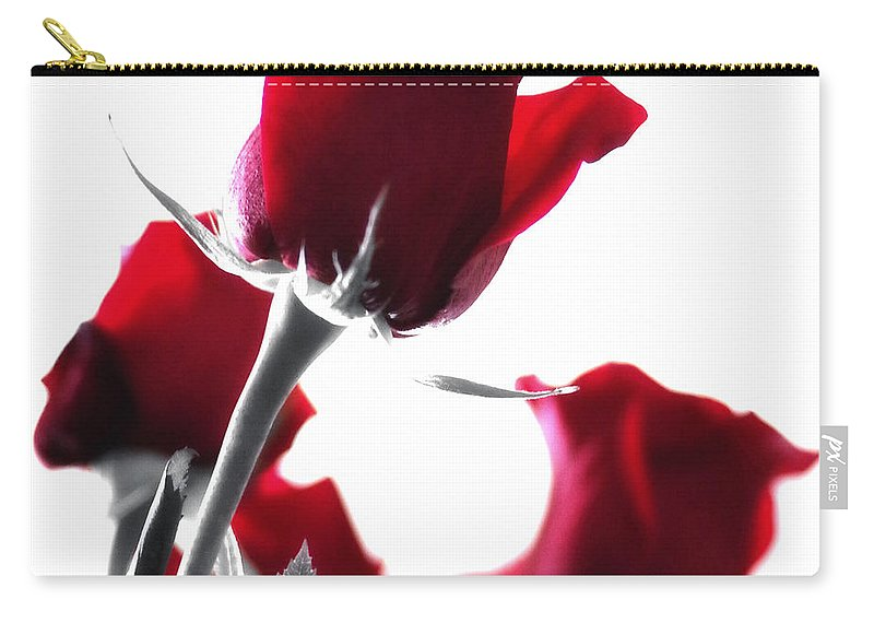 Red Rose Carry-all Pouch featuring the photograph Red Rose Color Block 2 by Joseph Hedaya