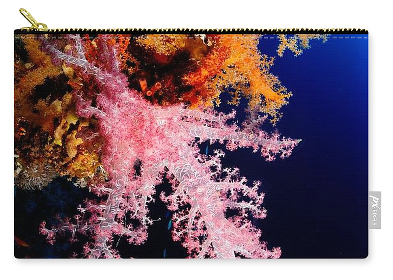Underwater Carry-all Pouch featuring the photograph Red Sea Coral by Iñigo Gutierrez Photo