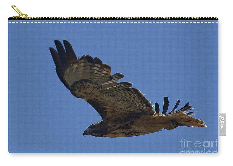 Hawk Carry-all Pouch featuring the photograph Red-tail Hawk #7602 by J L Woody Wooden