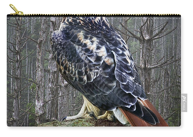 Art Carry-all Pouch featuring the photograph Red Tailed Hawk Perched On A Rock by Randall Nyhof