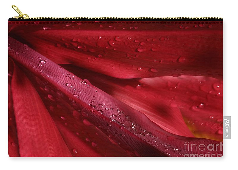 Cordyline Terminalis Carry-all Pouch featuring the photograph Red Ti The Queen Of Tropical Foliage by Sharon Mau