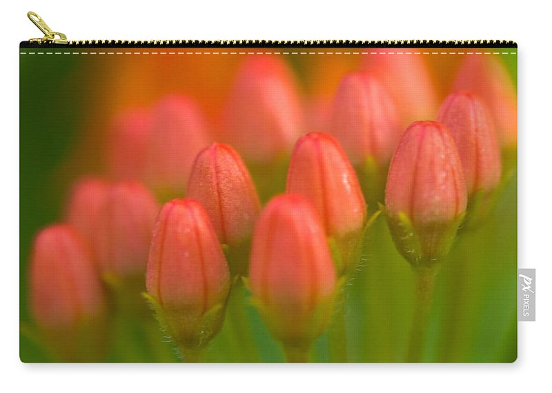 Tulip Carry-all Pouch featuring the photograph Red Tulips by Sebastian Musial