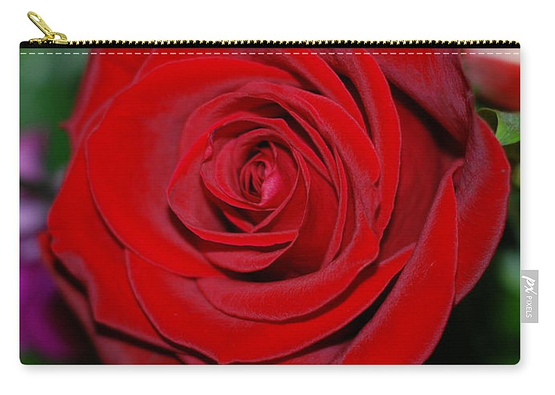 Red Rose Carry-all Pouch featuring the photograph Red Velvet Rose by Connie Fox
