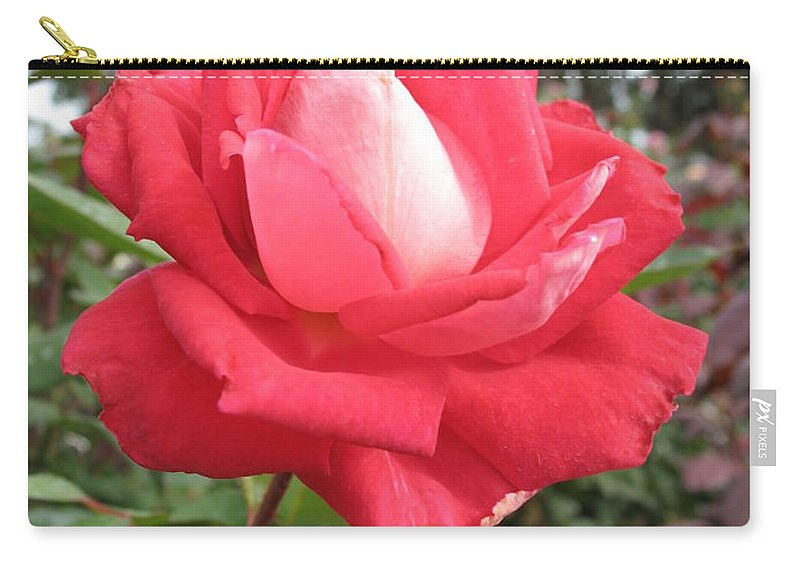 Rose Carry-all Pouch featuring the photograph Red-white Rose by Christiane Schulze Art And Photography