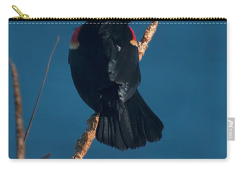 Red Carry-all Pouch featuring the photograph Red Winged Black Bird by Photos By Cassandra