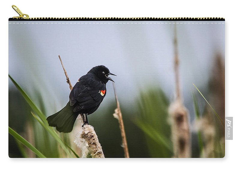 Cattails Carry-all Pouch featuring the photograph Red Winged Blackbird Singing by Eti Reid