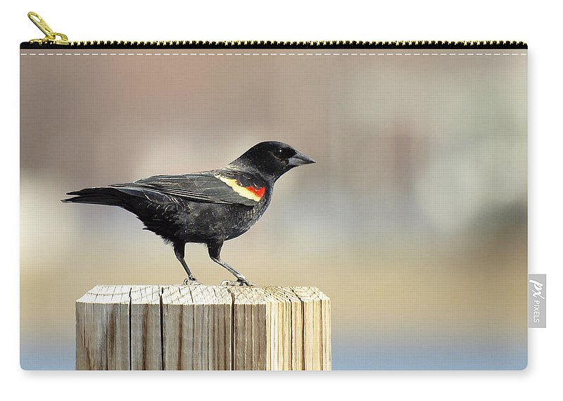 Red Winged Blackbird Carry-all Pouch featuring the photograph Red Winged Blackbird by Thomas Young