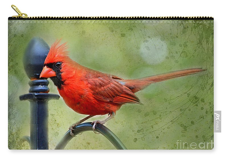 Animals Carry-all Pouch featuring the photograph Redbird Alert by Debbie Portwood