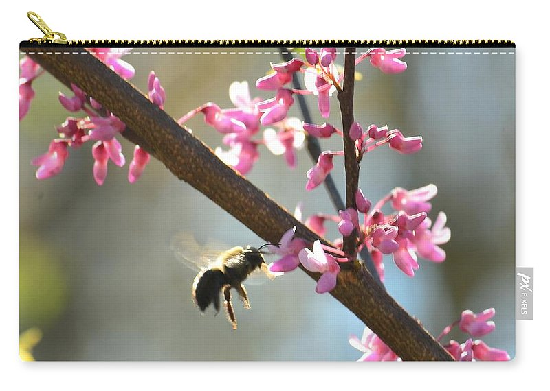 Redbud Morning Carry-all Pouch featuring the photograph Redbud Morning by Maria Urso
