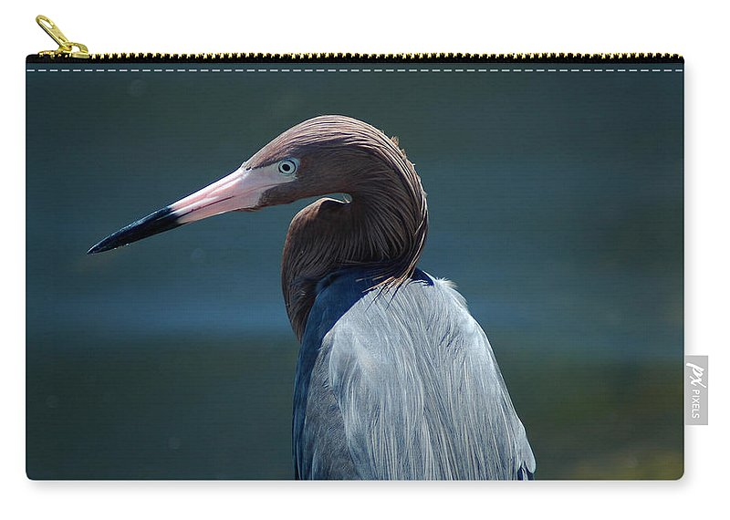 Egret Carry-all Pouch featuring the photograph Reddish Egret 3 by David Weeks