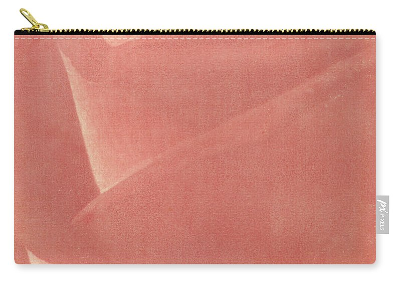 Rose Carry-all Pouch featuring the photograph Reddish Rose by Casper Cammeraat