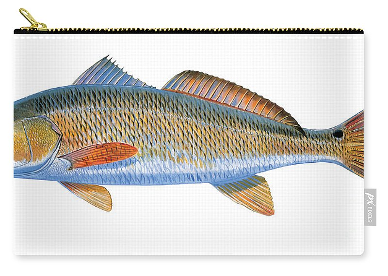 Redfish Carry-all Pouch featuring the painting Redfish by Carey Chen
