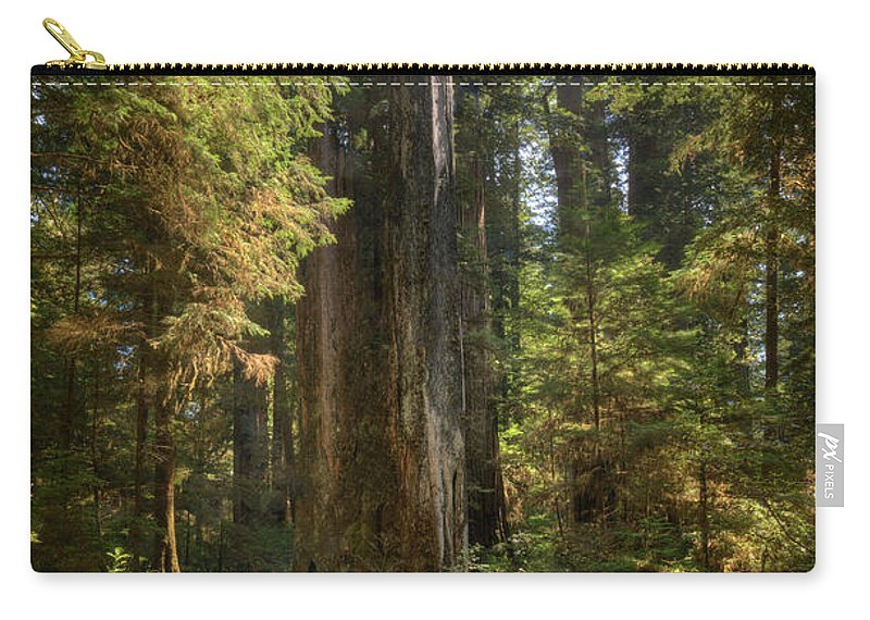 California Carry-all Pouch featuring the photograph Redwood Forest On A Perfect Spring Day by Ed Freeman
