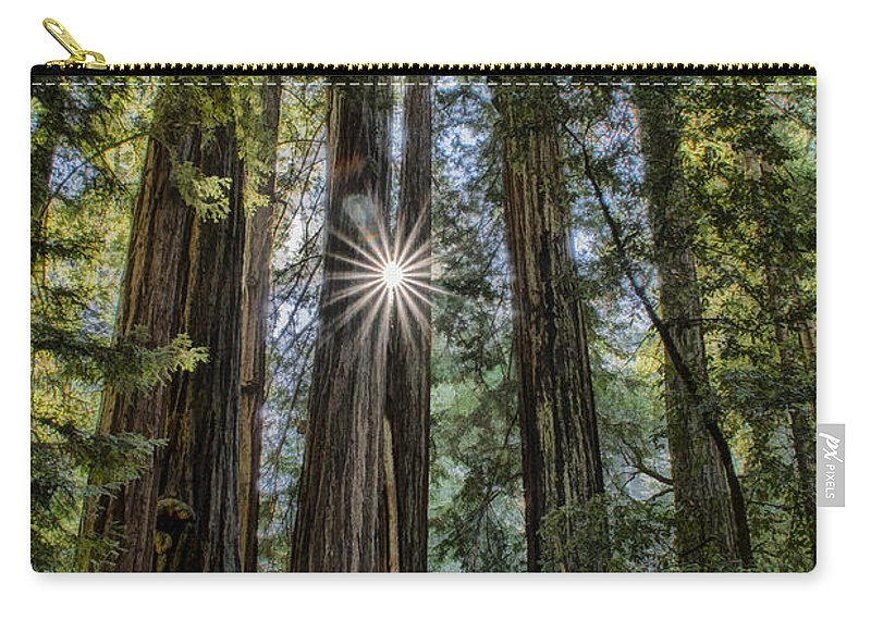Redwoods Carry-all Pouch featuring the photograph Redwoods by Erika Fawcett
