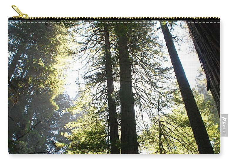 Redwoods Carry-all Pouch featuring the photograph Redwoods IIII by Kathy Sampson