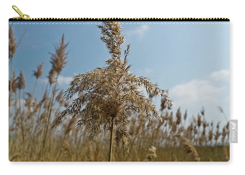 Reeds Carry-all Pouch featuring the photograph Reeds by Gary Eason