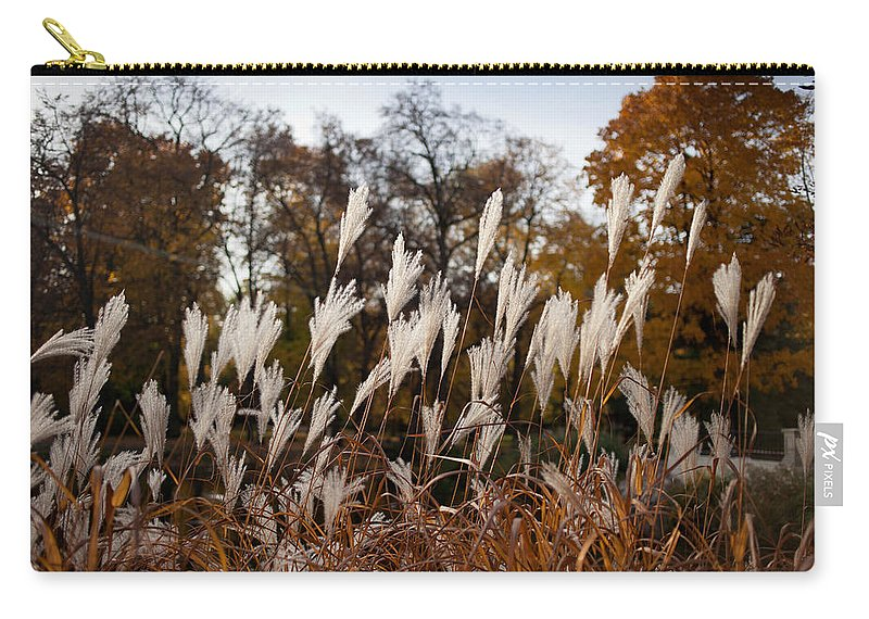Reed Carry-all Pouch featuring the photograph Reeds Highlighted By The Sun by Artur Bogacki