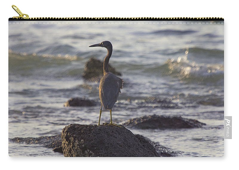 Reef Egret Carry-all Pouch featuring the photograph Reef Egret by Douglas Barnard