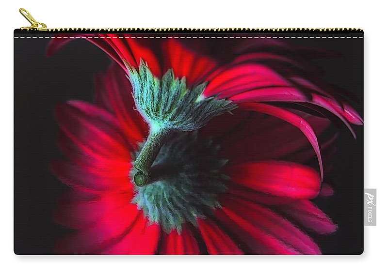 Flower Carry-all Pouch featuring the photograph Reflection Of The Gerbera by Jenny Hudson
