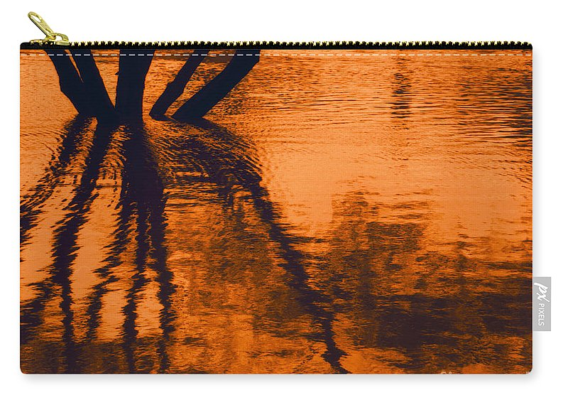 Water Carry-all Pouch featuring the photograph Reflectivity by Heather Kirk