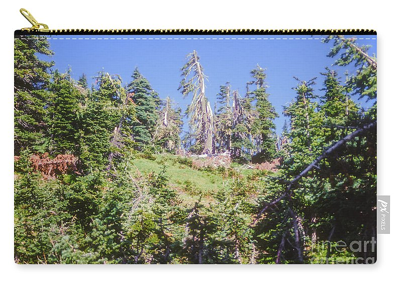 Olympic National Park Washington Parks Tree Trees Forest Forests Nature Landscape Landscapes Carry-all Pouch featuring the photograph Reforestation by Bob Phillips