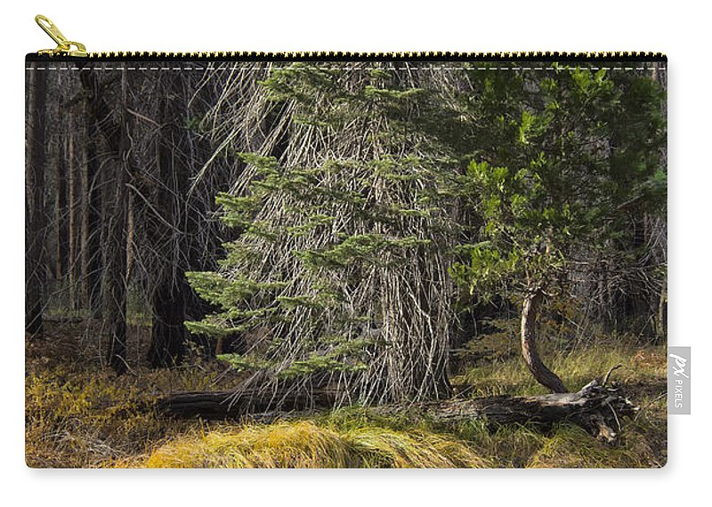 Yosemite Carry-all Pouch featuring the photograph Regeneration by Erika Fawcett