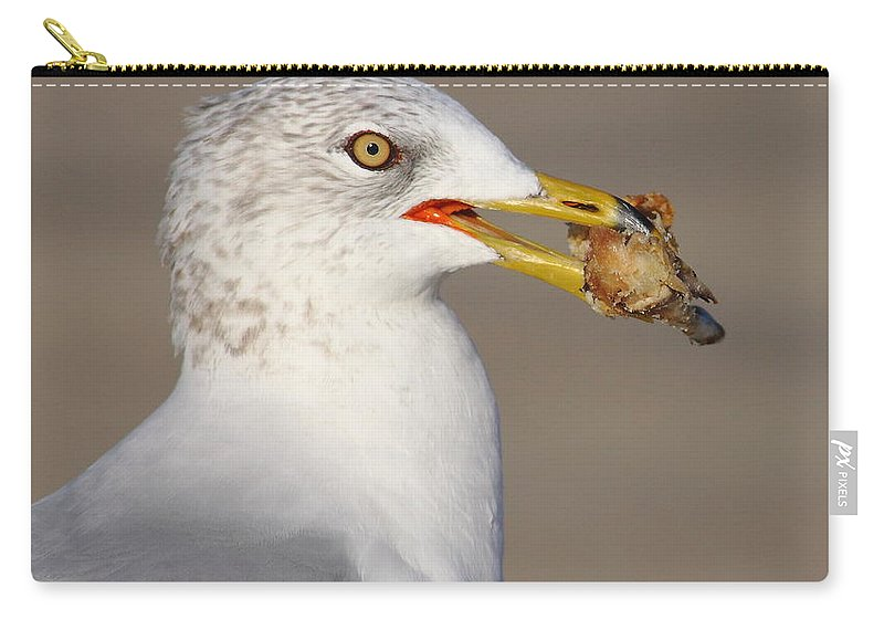 Gull Carry-all Pouch featuring the photograph Relatives For Dinner by Robert Frederick