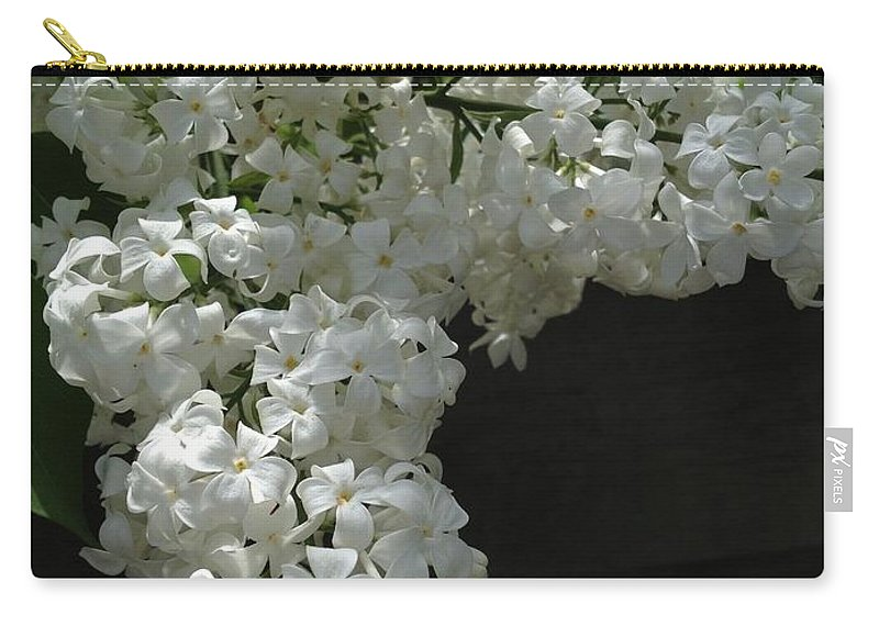 Lilac Carry-all Pouch featuring the photograph Requests by Joseph Yarbrough