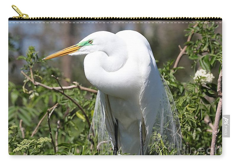 Egret Carry-all Pouch featuring the photograph Resting Great Egret by Carol Groenen