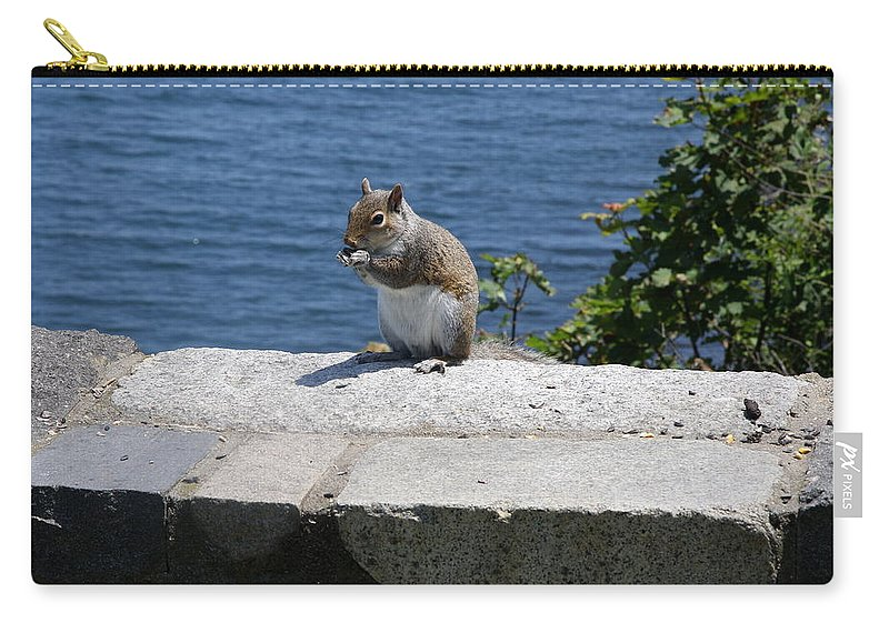 Squirrel Carry-all Pouch featuring the photograph Rhode Island Squirrel by Christiane Schulze Art And Photography