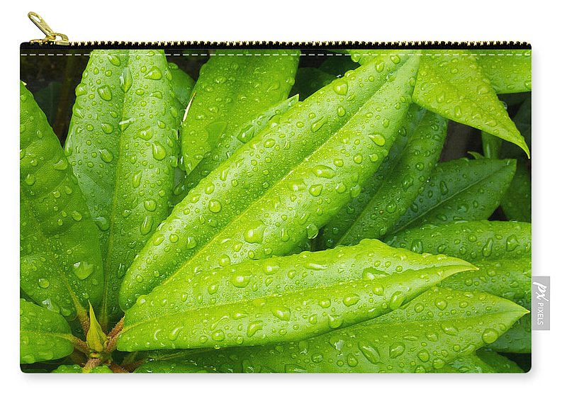 Agriculture Carry-all Pouch featuring the photograph Rhododendron Leaves by John Trax