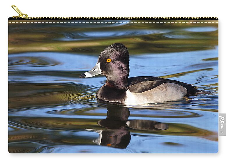 Ring-necked Duck Carry-all Pouch featuring the photograph Rings around Ring-necked Duck by Andrew McInnes