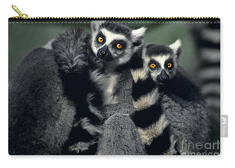 Africa Carry-all Pouch featuring the photograph Ringtailed Lemurs Portrait Endangered Wildlife by Dave Welling