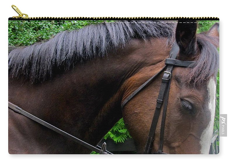 Horse Carry-all Pouch featuring the photograph River by Denise Mazzocco