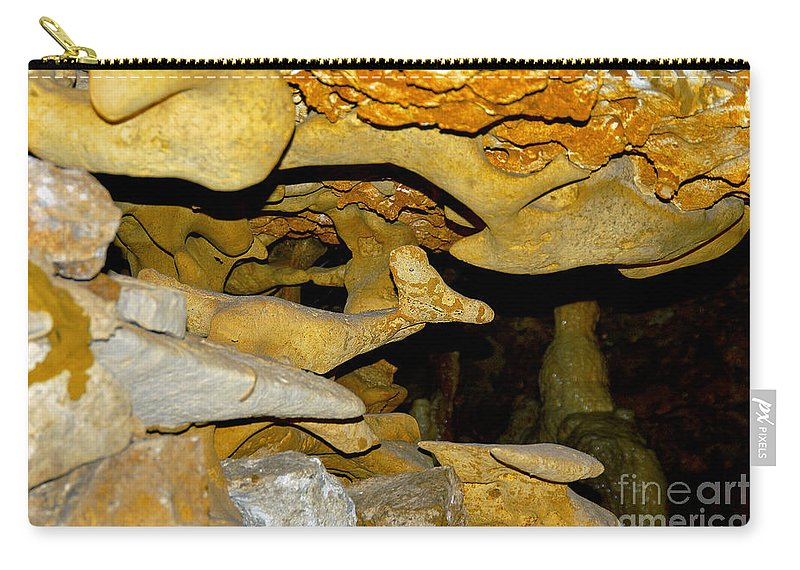 Inner Space Caverns Carry-all Pouch featuring the photograph Roadrunner And The Rabbit - Georgetown Texas by Bob Phillips