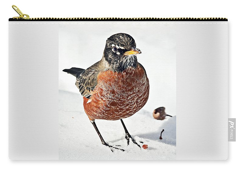American Carry-all Pouch featuring the photograph Robin In The Snow by Marcia Colelli