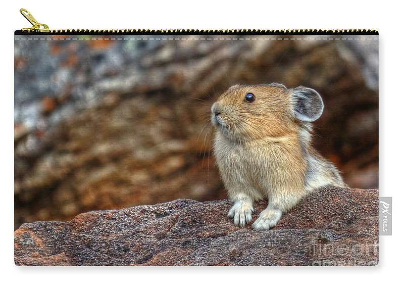 Pika Carry-all Pouch featuring the photograph Rock Rabbit by James Anderson