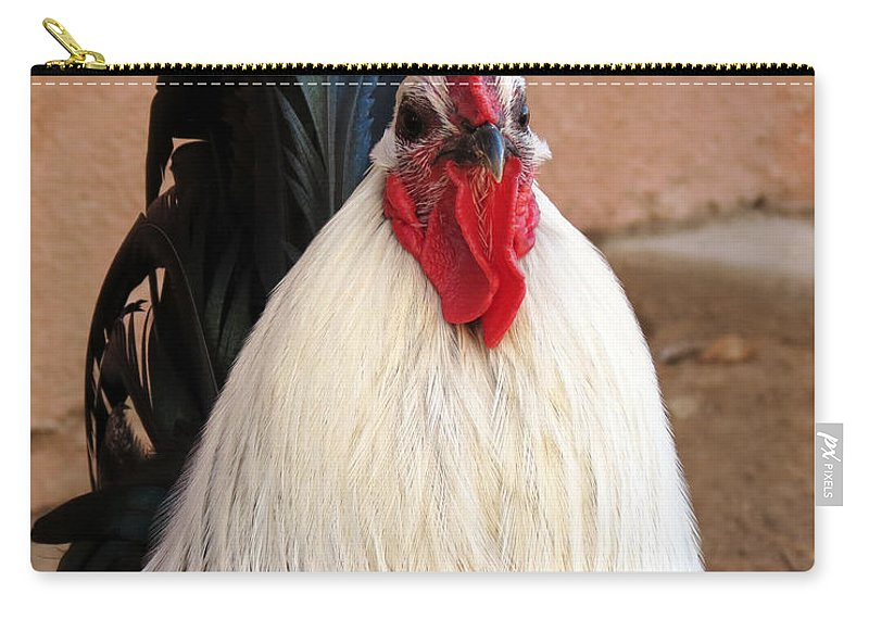 Rooster Carry-all Pouch featuring the photograph Rooster by Laurel Powell