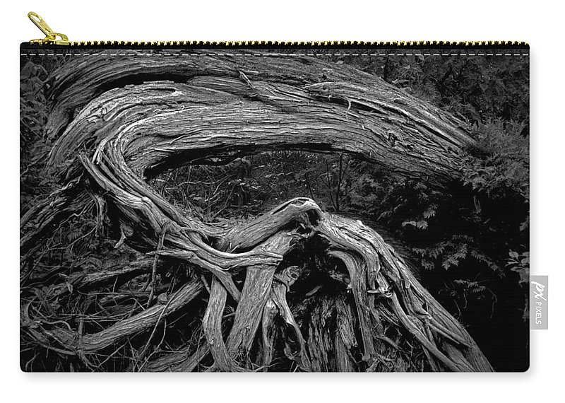 Art Carry-all Pouch featuring the photograph Roots Of A Fallen Tree By Wawa Ontario In Black And White by Randall Nyhof