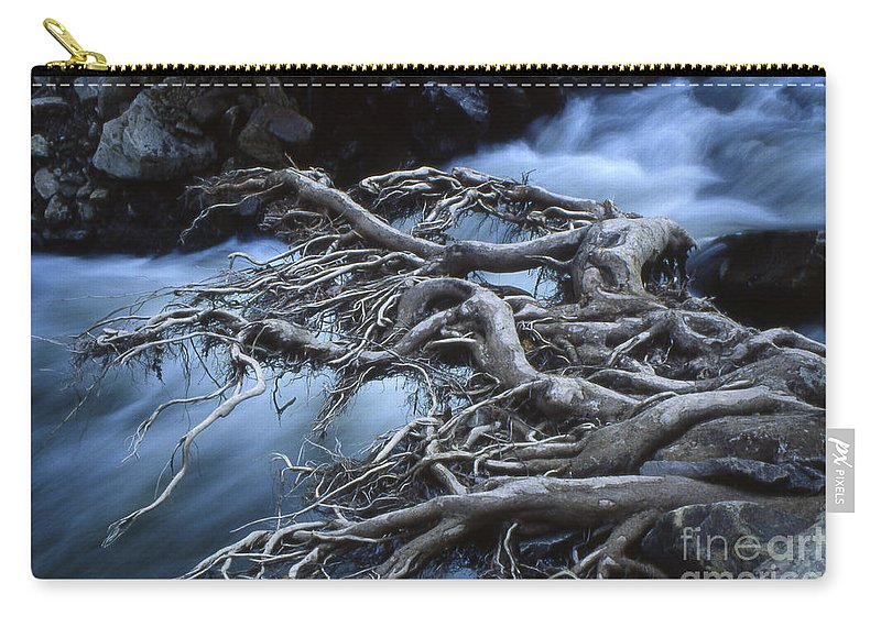 Trees Carry-all Pouch featuring the photograph Roots Over Ozark Stream by Garry McMichael
