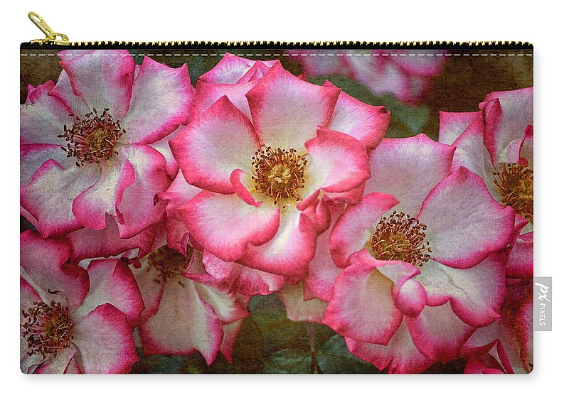 Floral Carry-all Pouch featuring the photograph Rose 298 by Pamela Cooper
