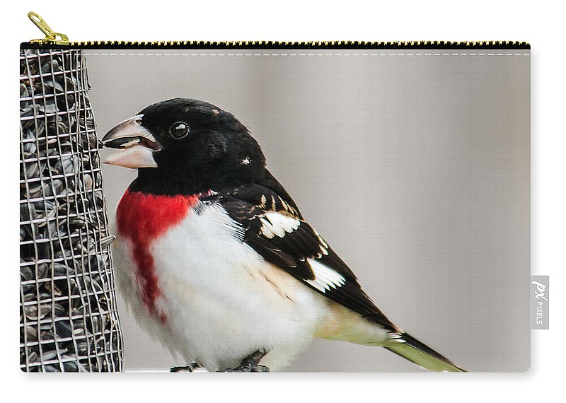 Wildlife Carry-all Pouch featuring the photograph Rose-breated Grosbeak Feeding by Edward Peterson