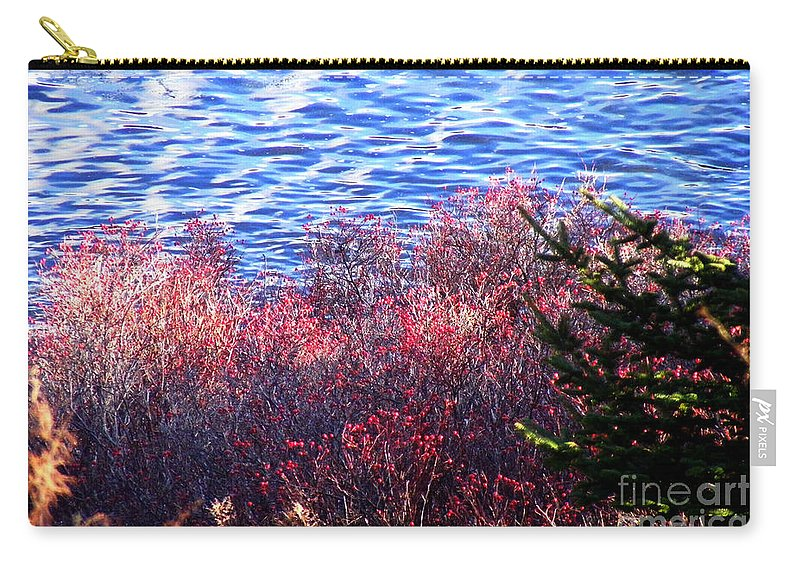Rosehips Carry-all Pouch featuring the photograph Rose Hips By The Seashore by Barbara Griffin